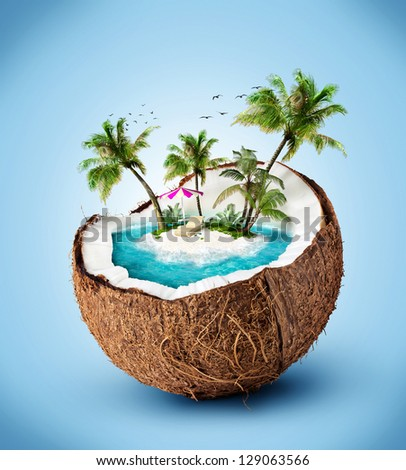 tropical island in coconut. Traveling, vacation - stock photo