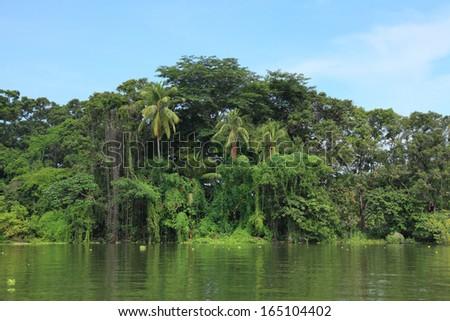 tropical island on the lake Nicaragua - stock photo