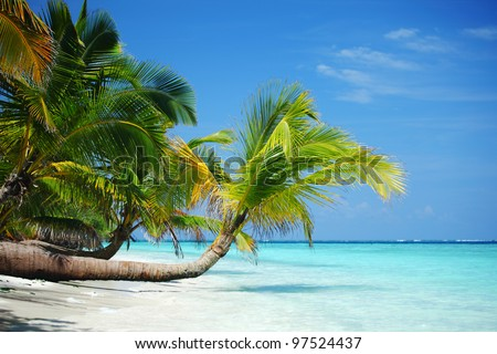 tropical island palm sea and sky - stock photo
