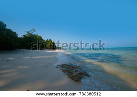 Tropical island surrounded by transparent turquoise water. Beautiful Landscape at Andaman And Nicobar