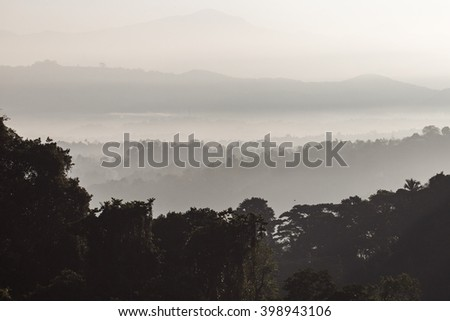 Tropical landscape overgrown with palm trees. Low clouds covers the hills in the background - stock photo