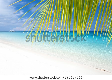 Tropical landscape with turquoise sea and white sandy beach through palm tree leafs - stock photo