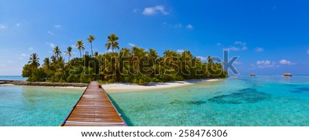 Tropical Maldives island - nature travel background - stock photo