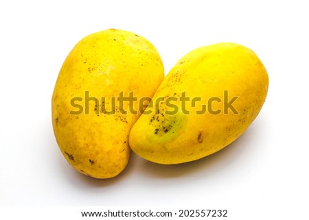 Tropical mango - stock photo