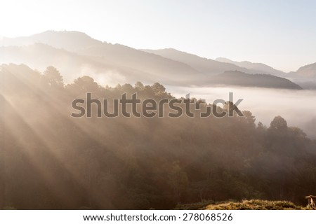 Tropical mountain mist at doiangkhang  in Chiangmai,Thailand  - stock photo