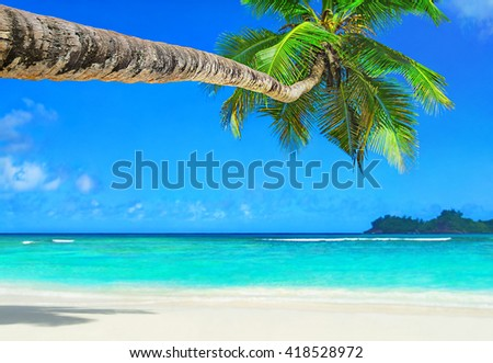 Tropical ocean beach with white sand, transparent turquoise water and coconut palm tree in bright sunny day, Mahe island, Seychelles - vacation background - stock photo
