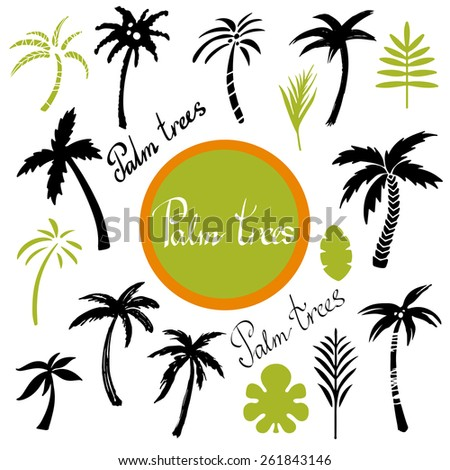 Tropical palm trees and leaves cartoon hand drawn illustrations set isolated on a white background, art logo design  - stock photo