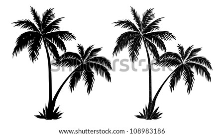 Tropical palm trees, black silhouettes and outline contours on white background - stock photo