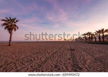 Tropical palm trees on the beach, at sunset with pastel colors