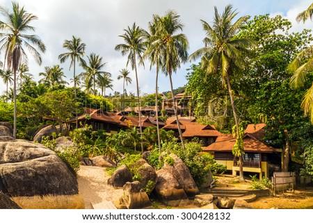 tropical palm trees resort beach summer nature landscape - stock photo