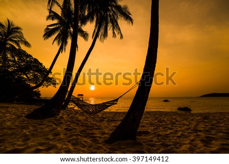 Tropical Paradise - Hammock between palm trees at the seaside on a tropical isla