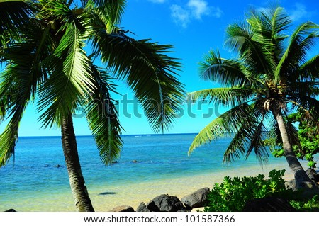 Tropical paradise in Kauai with palm trees and ocean - stock photo