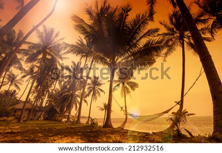 Tropical paradise: sunset at the seaside - dark silhouettes of hammock and palm trees and amazing reddish sky with sunflare - stock photo