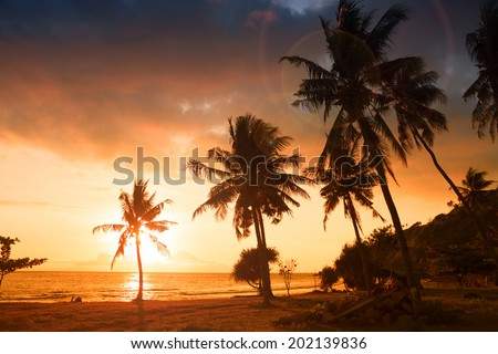 Tropical paradise: sunset at the seaside - dark silhouettes of palm trees and amazing cloudy sky - stock photo