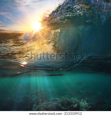 Tropical paradise template with sunlight. Ocean surfing wave breaking and coral reef underwater - stock photo