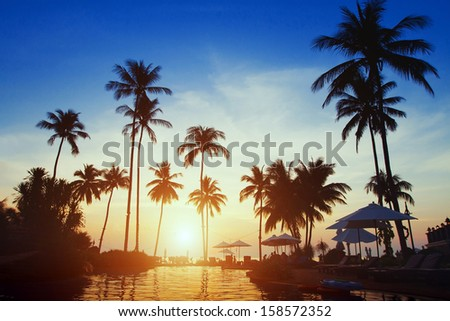 tropical paradise, travel background  - stock photo