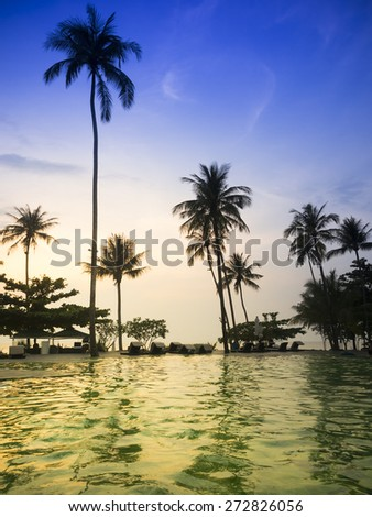 Tropical pool in summer twilight - stock photo
