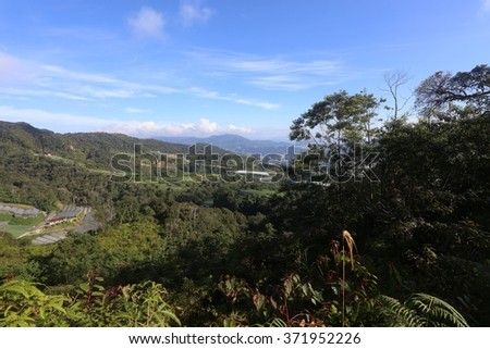 Tropical rainforest in Berinchang, Cameron Highlands, Malaysia. - stock photo