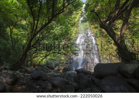 Tropical rainforest landscape with beautiful waterfall, rocks and jungle plants. Vang Vieng, Laos - stock photo