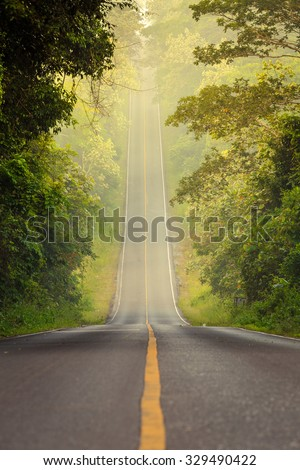 Tropical RainForest, road at Khaoyai National Park (The World Heritage of nature) Thailand - stock photo