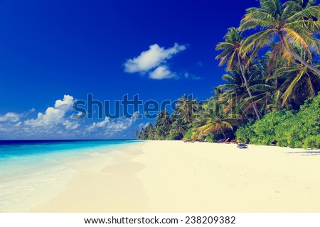 tropical sand beach, vacation concept - stock photo