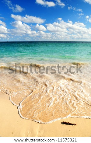 Tropical sandy beach with advancing wave and blue sky