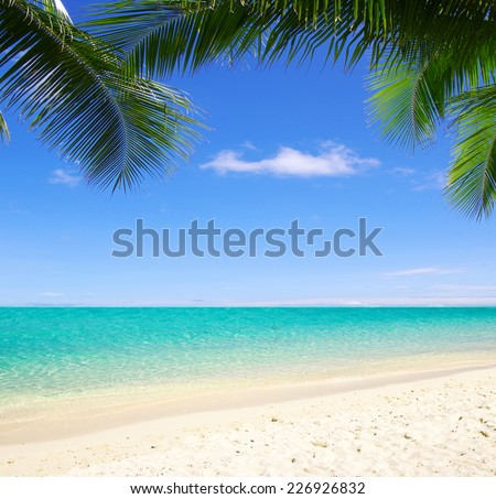 tropical sea