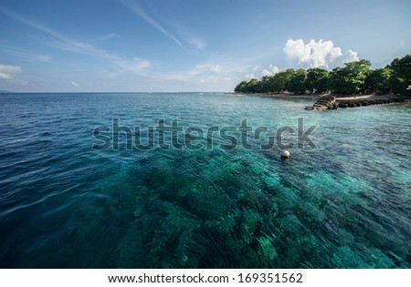 Tropical sea and coral reef. Indonesia