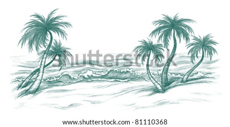 tropical sea beach with the palms