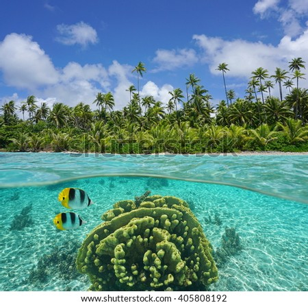 Tropical shore with coconut trees of an islet and coral with fish underwater in the lagoon of Huahine, split view above and below water surface, Pacific ocean, French Polynesia - stock photo