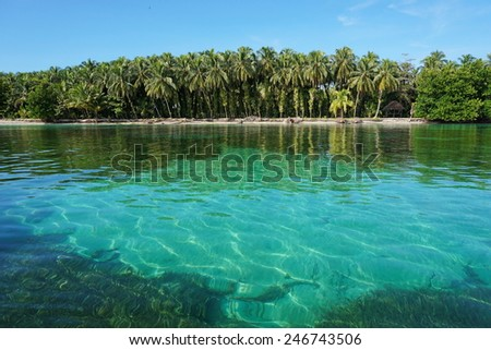 Tropical shore with lush vegetation and clear water of the Caribbean sea, Zapatillas islands located in the archipelago of Bocas del Toro, Panama - stock photo