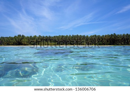 Tropical shoreline horizon of Caribbean beach with lush tropical vegetation viewed from water surface, Zapatilla island, Bocas del Toro, Panama