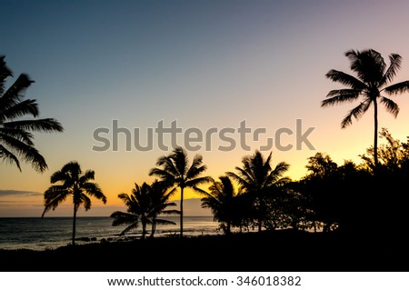 Tropical silhouette of palm trees during sunset on Kauai, Hawaii