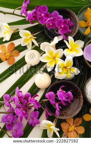 tropical spa and palm texture - stock photo