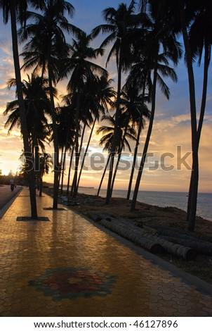Tropical sunset - stock photo