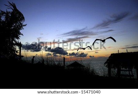 Tropical sunset viewed from land with beach straw hut to the side. - stock photo