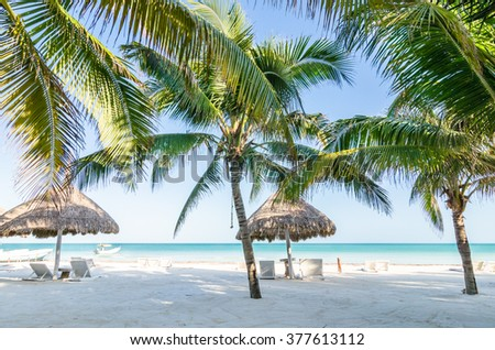Tropical vacation resort summer sea view. Palm trees near the turquoise sea with beach wooden sunshades and bedstones at exotic white sandy beach in the Caribbean sea - stock photo