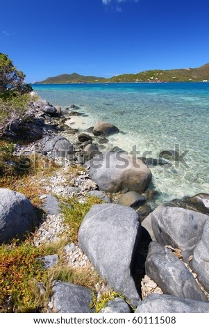 Tropical vegetation along a rocky shore in the British Virgin Islands - stock photo