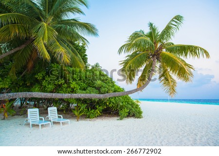 Tropical white sand beach with palm trees - stock photo
