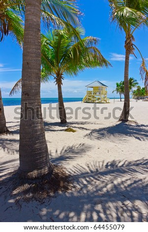 tropical white sand beach with palm trees and lifegard tower - stock photo