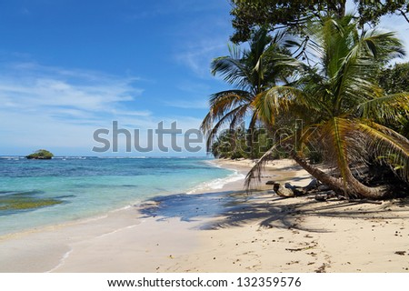 Tropical wild sandy beach with an islet, coconut trees and turquoise water
