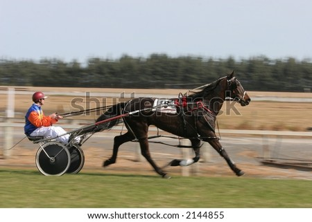 Trotting (harness racing) horse in the home stretch in Canterbury, New Zealand - stock photo