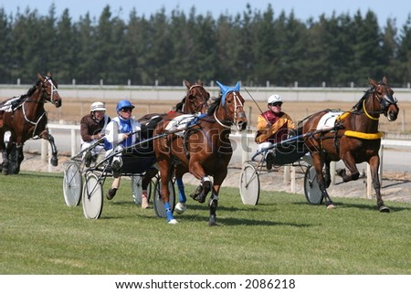 Trotting (harness racing) horses in the home stretch in Canterbury, New Zealand - stock photo