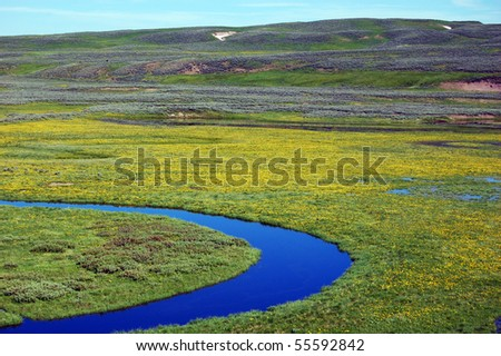 Trout Creek in Yellowstone National Park - stock photo