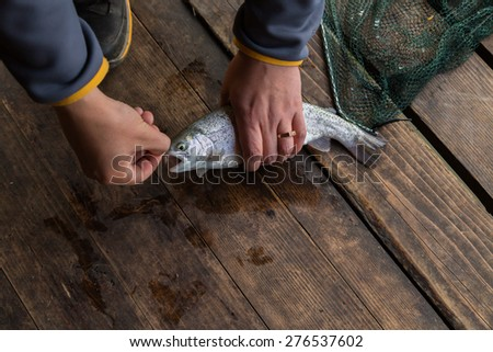 Trout. Freshly caught trout on a wooden background. Trout fishing. The caught fish. - stock photo
