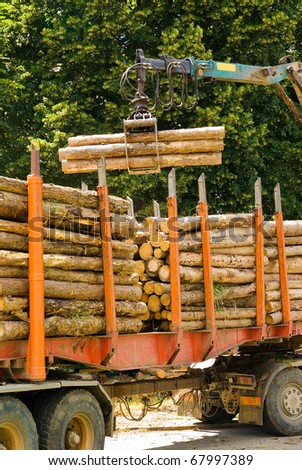 Truck loading wooden logs, wood industry - stock photo