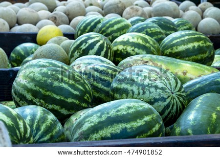 Truckload of whole watermelons and cantaloupe melons for sale at farmers market