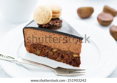 truffle cake with chestnut mousse on a white plate. tinting. selective focus - stock photo