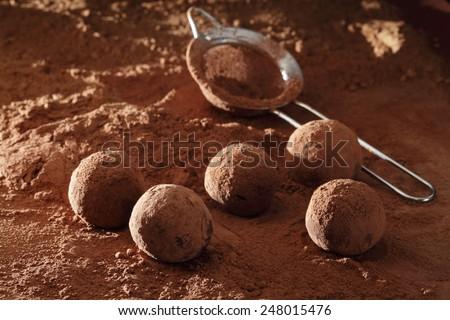 Truffle chocolate candies on cocoa powder - stock photo