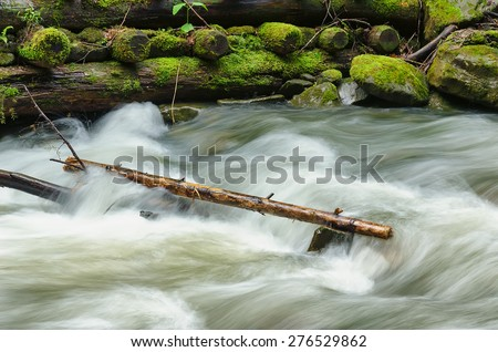 trunk in the water of the stream - stock photo